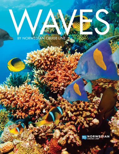 NCL_Waves 2019 1 (1)